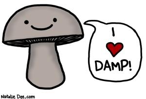 yay-damp